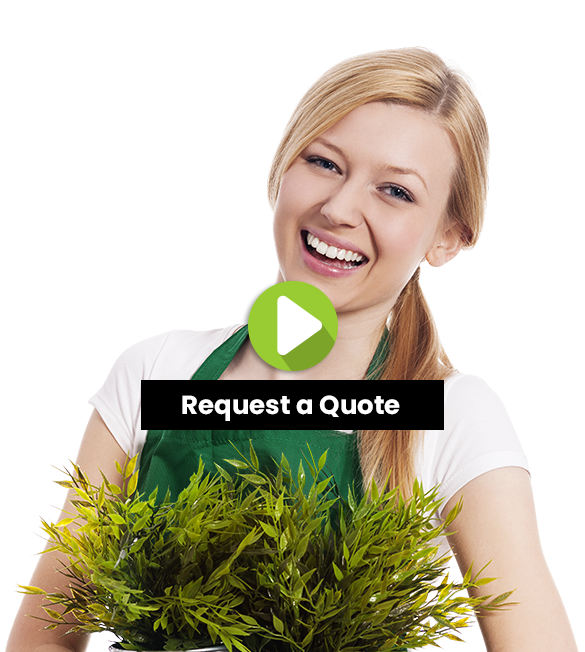 Bundoora Lawn Mowing and Grass Cutting Services